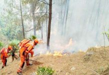 page3news-uttarakhand forest fire