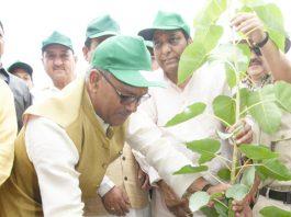 page3news-Planting plants in CM Trivandrum Mothrova